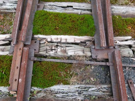Mind the gap by ecfield
