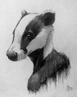 #020 - Badger's bust by GreyM83