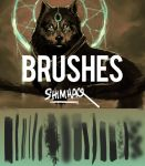 My brushes! by shimhaq98