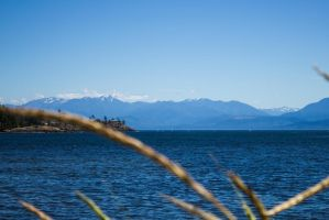 The Salish Sea by DeadLetterDesign