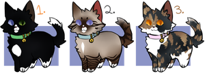 More Kitten Adoptables | Open 2/3 by LeafeonPrince