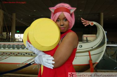 Amy Rose- Sonic Series by Shecktor-Photography