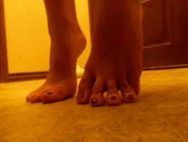 Tippytoes 1 by bumble1020