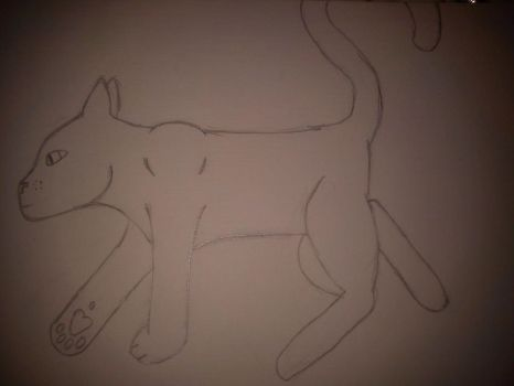 Kitty Drawing W.I.P by Rex5678