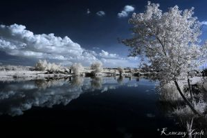 sunset at the lake by Konczey-Zsolt