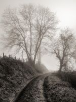 Misty road by WTek79