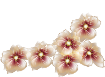 [RES] Brown Flowers PNG by HanaBell1