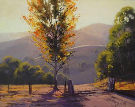 Afternoon Kanimbla Valley by artsaus