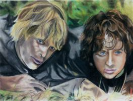 Frodo and Sam by happylilsquirrel