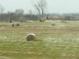 Frosted Hay Bales by Toranih-stock