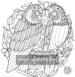 Blue Throated Macaw (The Exotic Colouring Book)