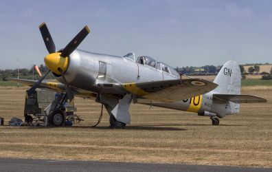 Hawker Sea Fury T20 by Small-Brown-Dog