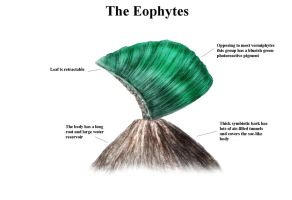 REP: The Eophytes by Ramul
