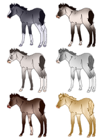 Colourpointed Foals 2 - Sold by Miss-Adopts