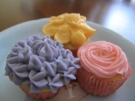 Naomi's mini cupcakes by maytel