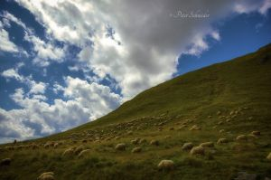 By the shepards in transylvanian mountains(II). by Phototubby