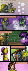 5 Things You Didn't Know About: Derpy by Rated-R-PonyStar