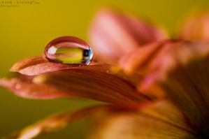 Just a drop 2 by Asem-A