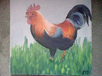 [Coll] Rooster by MichenSneeuwhart