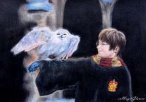 Harry Potter and Hedwig by xxMagicGlowxx