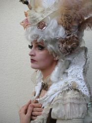 Stock - Baroque Swan Lady sideview portrait 2 by S-T-A-R-gazer