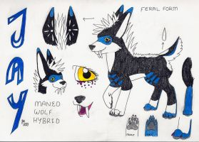 Jay Feral Ref. Sheet (Outdated) by basenjiboy