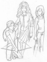 Katniss and Hermione and Tris by chrysalisgrey