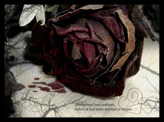 Withered Love. by exPRESS10Nism