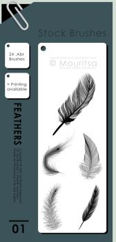 Brush Pack - Feathers by iMouritsa