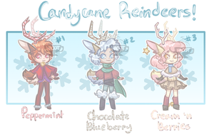 {0/3} Candycane Reindeers by Hacot