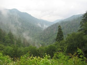 Smoky Mountains by Animalluver101