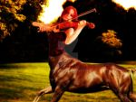 The Violinist by Aerich86