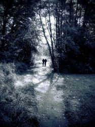 The Paths We Walked by photodust