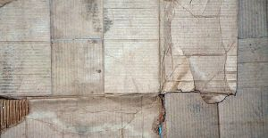soaked cardboard - moldy by DougFromFinance