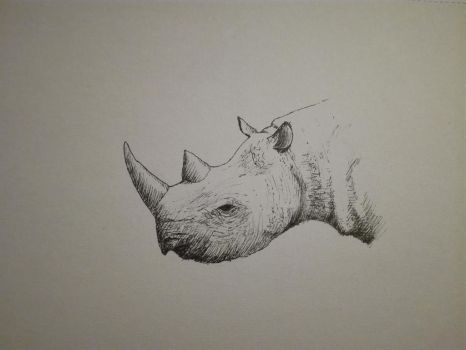 Inktober 2017, Day 19: rhinoceros by GLangGould