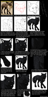 -old- Wolf Character TUTORIAL by Sidonie