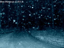 Snow In A Snowless Land by BreeSpawn
