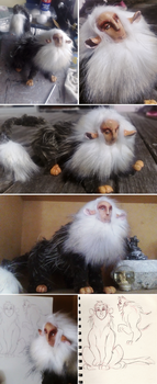 Lukas the very fluffy Sphinx art doll by Heliocathus