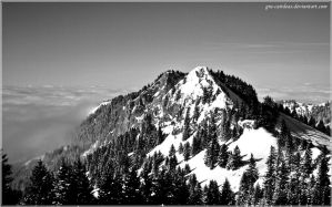 Rising above - BW by gra-cairdeas