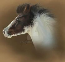 Paint Horse Realism by harkened