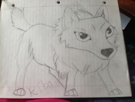 kiba from wolf's rain! by iluvgrey
