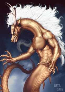 Commission: Gold Dragon IV by AltaGrin