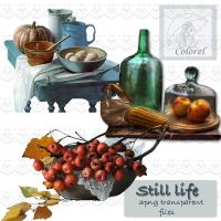 Still Life by libidules
