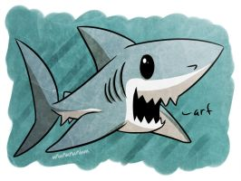 shark week day 5- PORBEAGLE by unbadger