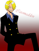 Sanji -- Concours by caromadden