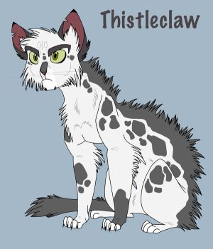 Thistleclaw by Graystripe64