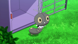 Scatterbug in the anime