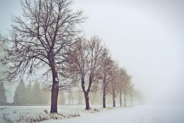 Lithuanian winter by Charley17