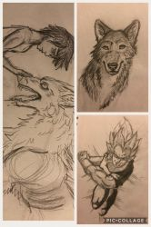 Quick collage of sketches  by Jinx135
