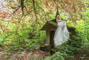 Fairy Flying by Lady-Schnaps